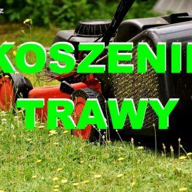 Koszenia trawników