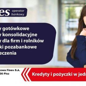 Fines - Operator Bankowy
